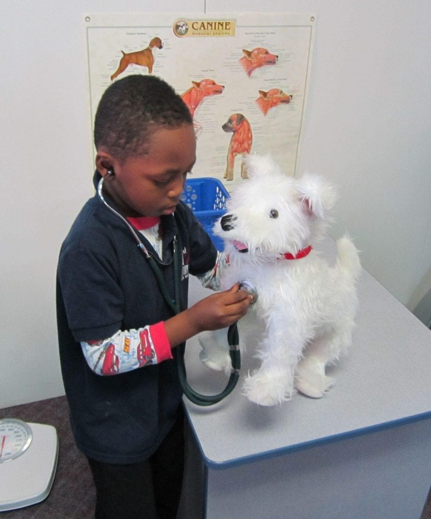 Child playing vet: Exhibit at the Curious Kids' Museum & Discovery Zone