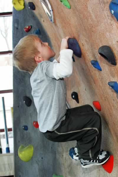 Kids' Climbing Wall: Exhibit at the Curious Kids' Museum & Discovery Zone